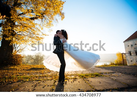Beautiful newlyweds posing near old tree at sunset park