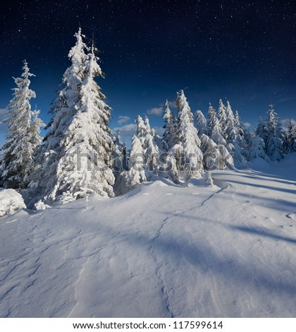 Beautiful night winter landscape in the mountains with the stars - stock photo
