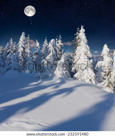 Beautiful night winter landscape in the mountains with the stars and full moon. - stock photo
