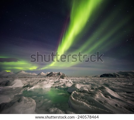 Beautiful Northern Lights - Arctic landscape  - stock photo