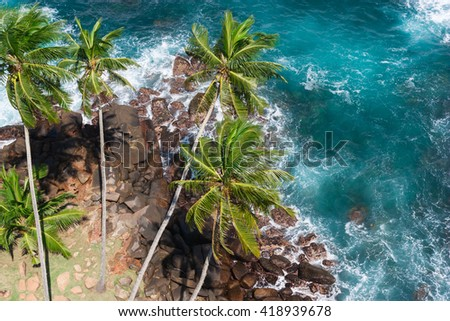 Beautiful ocean in Sri Lanka. View from top of lighthouse Dondra. Palms and ocean from high viewpoint. - stock photo