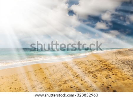 Beautiful ocean landscape with sandy beach in the background, blue sky and sunshine. Maui nature background, Hawaii