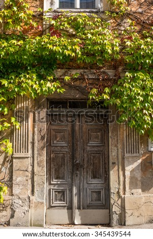 Beautiful old wooden door covered with vine leaves, situated in the small town Altenmark  in the Ennstal Alps in Styria, Austria - stock photo