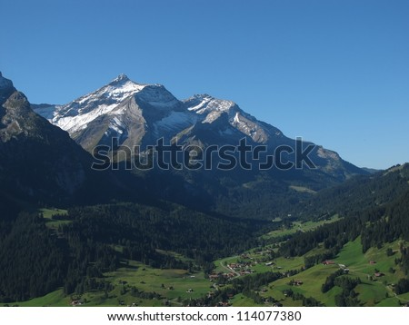 Beautiful Oldenhorn - stock photo