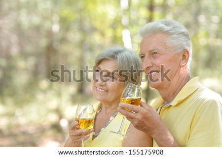 Beautiful older couple drinking wine on nature - stock photo