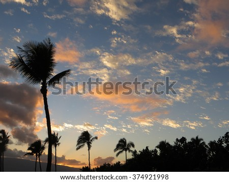 Beautiful orange clouds at dawn, and coconut palms, in Maui