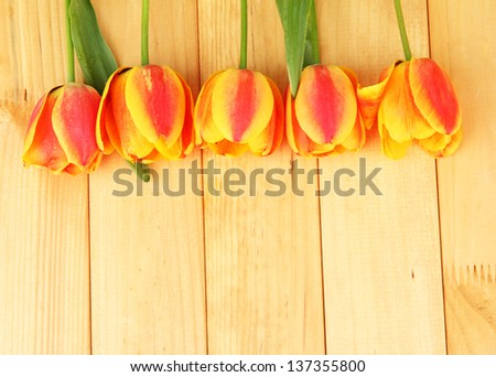 Beautiful orange tulips on wooden background - stock photo