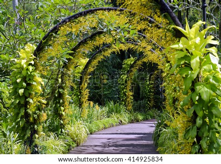 Beautiful orchid covered arches on a pathway - stock photo