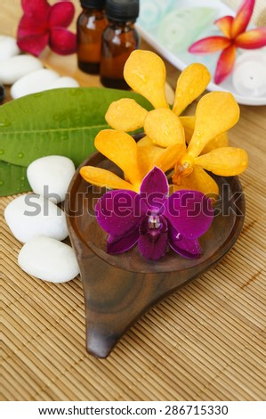 Beautiful orchid flower. Wellness spa concept - stock photo