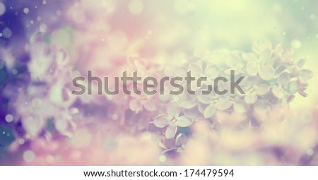 Beautiful organ flower - stock photo