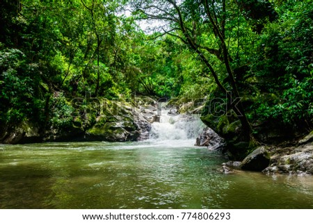 Beautiful outdoor view of the Minca waterfall surrounding of nature, Santa Marta, Colombia