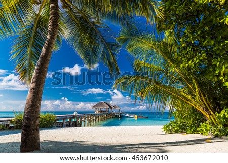 Beautiful palm trees and tropical beach. Moody blue sky and blue lagoon. Luxury travel summer holiday background concept. - stock photo