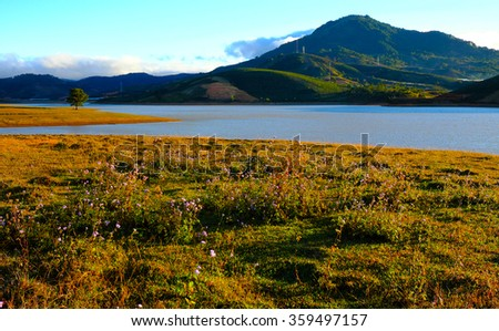 Beautiful panorama landscape at Dalat countryside, Vietnam, amazing wide grass in yellow morning, lake among pine forest, mountain far away, pine tree, wonderful scene for Da Lat, Viet Nam travel