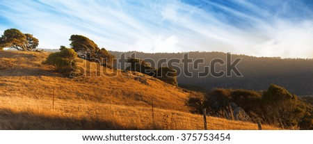 Beautiful panorama landscape of a windy hill. Yellow field of countryside with blue sky in summer, California, USA, America - stock photo