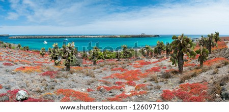 Beautiful panorama of Galapagos South Plaza island - stock photo
