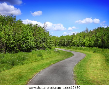 Beautiful park alley - stock photo