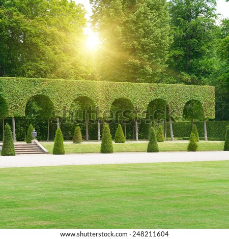 Beautiful park lit by the sun - stock photo