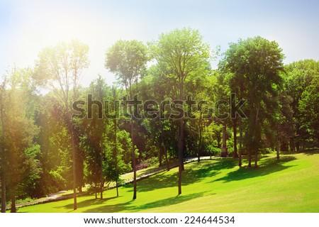 Beautiful park outdoors - stock photo