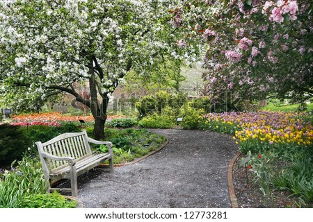 beautiful park setting with bench, flowers, trees and path