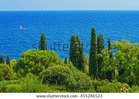 Beautiful park with cypresses and cedar trees on the slope on the shore of Black Sea in Crimea with a view of the calm sea and the yacht in the distance in the hot sunny summer day
