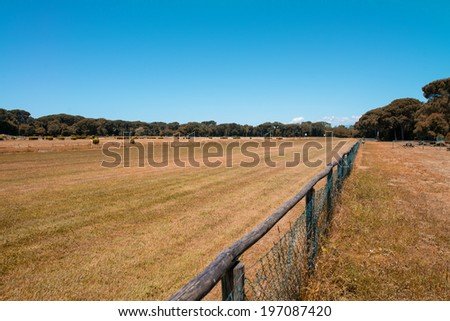 Beautiful park with horse race track. - stock photo
