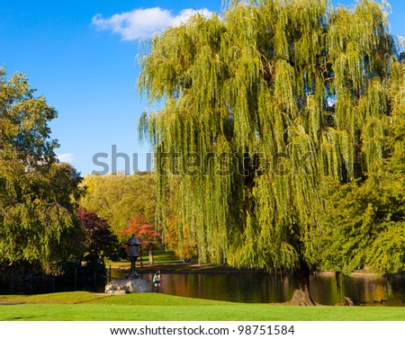 Beautiful park with trees and a lake in spring - stock photo