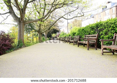 Beautiful park with trees and benches - stock photo