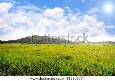 Beautiful pasture field with hay bale rolls and a blue sky with clouds - stock photo