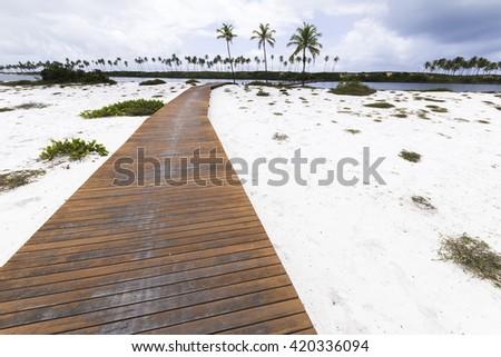 beautiful path on tropical island off the coast of Costa do Sauipe in Bahia Brazil - stock photo