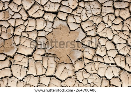 Beautiful pattern of land cracked by the drought - stock photo