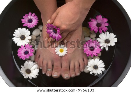 Beautiful pedicured feet and manicured hand with colorful spring daisies in a spa