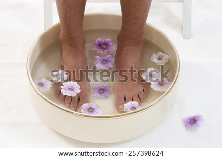 Beautiful pedicured feet  with colorful spring daisies in a spa - stock photo