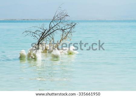 Beautiful photo coast of the Dead Sea , Israel . Bokeh .  - stock photo
