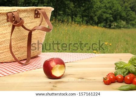 Beautiful pick-nick table - stock photo