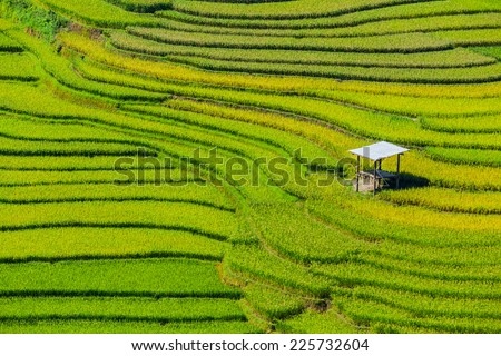beautiful pictures of nature in Vietnam - stock photo