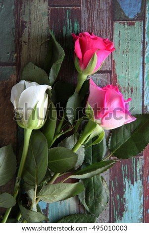 Beautiful pink and white roses on a wooden background