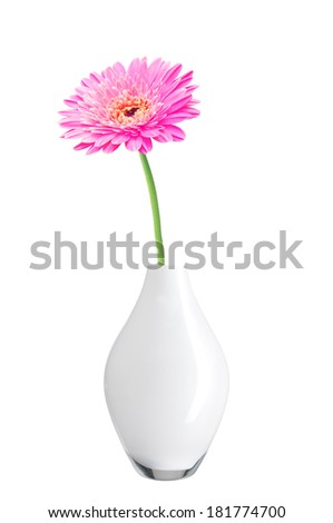 beautiful pink gerbera daisy flower in vase isolated on white background - stock photo