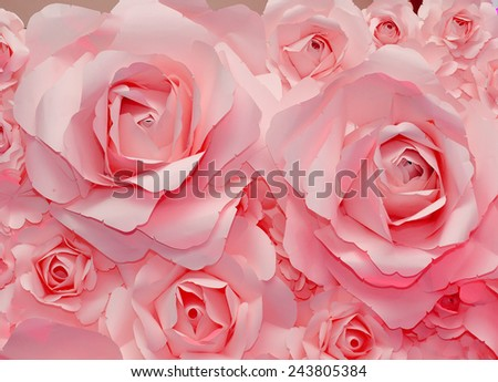 Beautiful pink rose background - stock photo