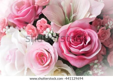 beautiful pink rose flower close-up. Custom made - stock photo