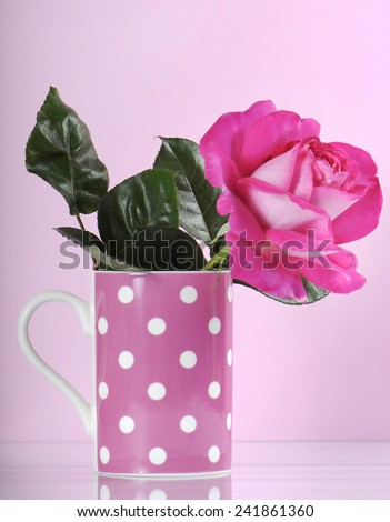 Beautiful pink rose gift in polka dot coffee cup on feminine pink background. - stock photo