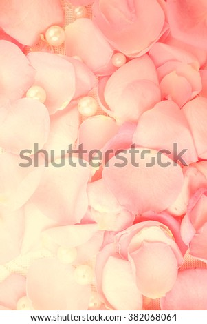 Beautiful Pink Rose Petals Pearls Stock Photo 383508790 ...