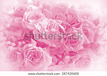 Beautiful pink roses bouquet  on a  on a soft background background.Invitation Card - stock photo