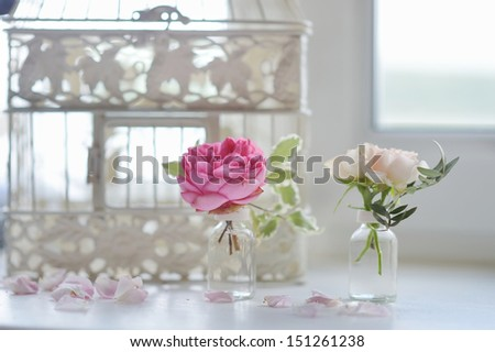 Beautiful pink roses in small vases - stock photo