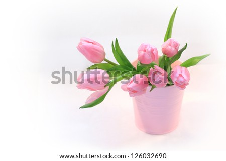 Beautiful pink tulips in the vase on white background - stock photo