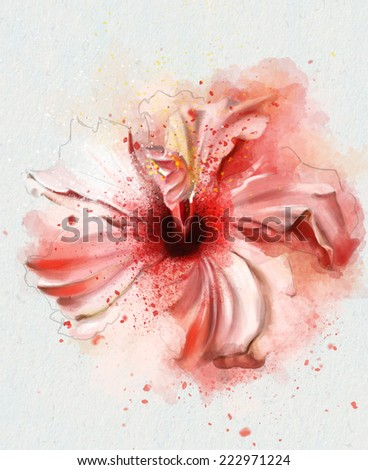 beautiful pink watercolor flower - stock photo