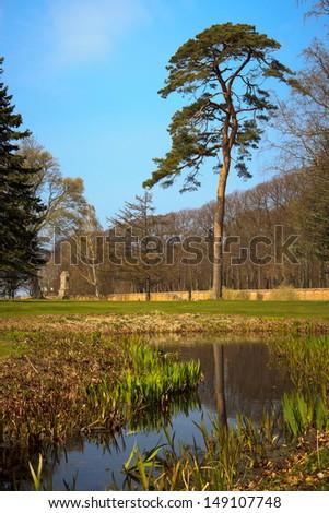 beautiful pond in the Jaegerspris park in Denmark - stock photo