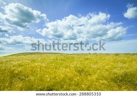 Beautiful prairie landscape with blue sky and clouds - stock photo
