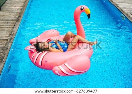 Resting Flamingos Stock Images Royalty Free Images Vectors Shutterstock