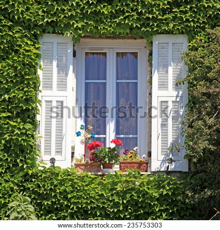 Beautiful provencal house window with white shutters, flower pot and ivy, Provence, France, square image