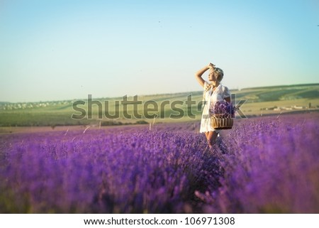 Beautiful provence woman relaxing in lavender field watching on sunset holding basket with lavanda flowers. Series. alluring girl with purple lavender. blond lady in blossom field . Ukraine - Crimea - stock photo